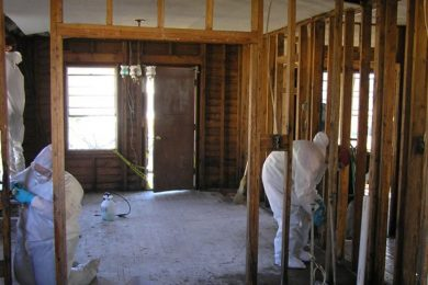 Mold Remediation And Removal